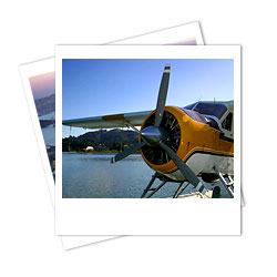 San Francisco Seaplane Golden Gate Tour from Sausalito
